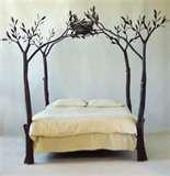 photos of Bed Frames Set Up