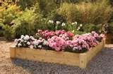 Raised Bed Frames Furniture pictures
